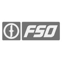 FSO logo